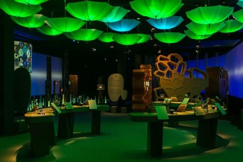 Museu do Amanha- Foto- Raquel Cunha-14.jpg